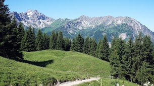 Willersalpe Hindelang Allgäu