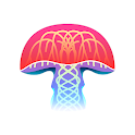 Mushroom Identification icon