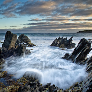 Into the Cove-2.jpg
