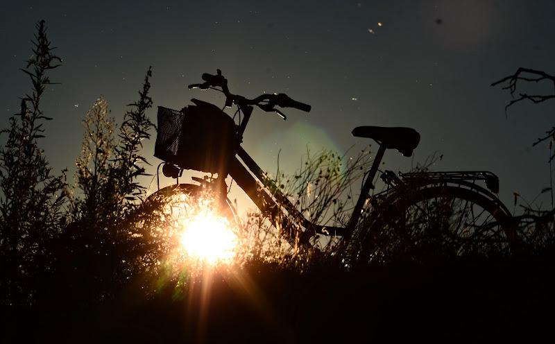 Effetti al tramonto di viola94