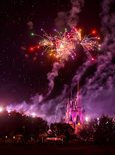 Photo: The RAW Fireworks  Today's fireworks photo from Disney World a few nights ago was just processed. This is from a single RAW photo. This was a handheld shot as I was walking along a pathway near the Crystal Palace. Amazing, eh?  From Trey Ratcliff at http://www.StuckInCustoms.com