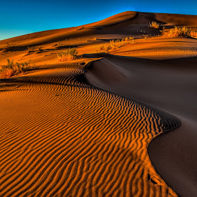 The Namib Desert by Johan Jooste Snr - Landscapes Deserts ( sand, namib desert, desert, sand-patterns, sand-ripples, namibia, light and shadow )