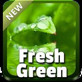 Fresh Green Theme