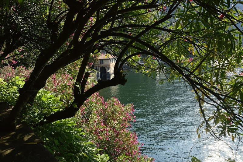 Quel ramo del lago di Como di Cary