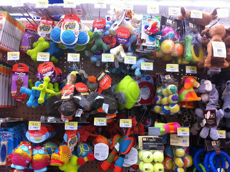 Photo: There are so many toys! The important toys for a puppy are chewing toys and squeaky toys, so I will focus on that!