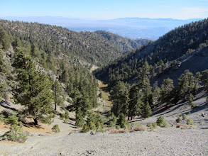 Photo: View east on North Backbone Trail