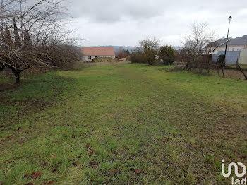 terrain à Coulanges-la-Vineuse (89)