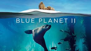 Blue Planet II thumbnail