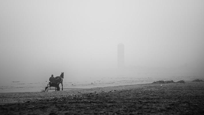 Il mare d'inverno di Marcello Zavalloni