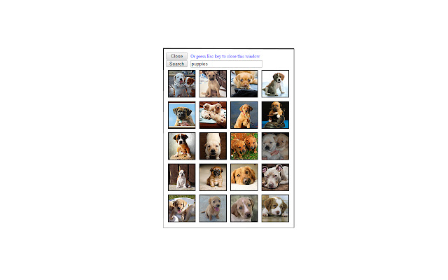 Flickr Photo Search