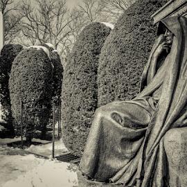 Adams memorial by Dale Youngkin - Buildings & Architecture Statues & Monuments ( adams, graveyard, tomb, statue, memorial )