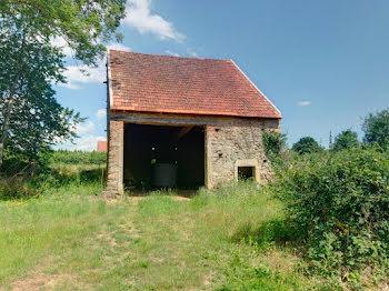 terrain à Villargoix (21)