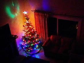 Photo: Christmas Tree with Lights!