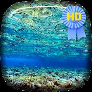Vacation Underwater Bungalow