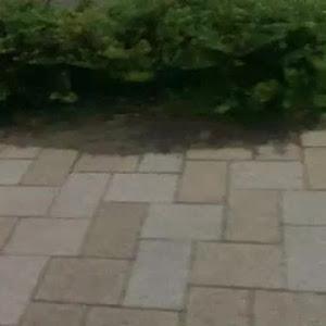 マグナム  不明のカスタム事例画像 lil tatuyaさんの2019年10月06日19:54の投稿