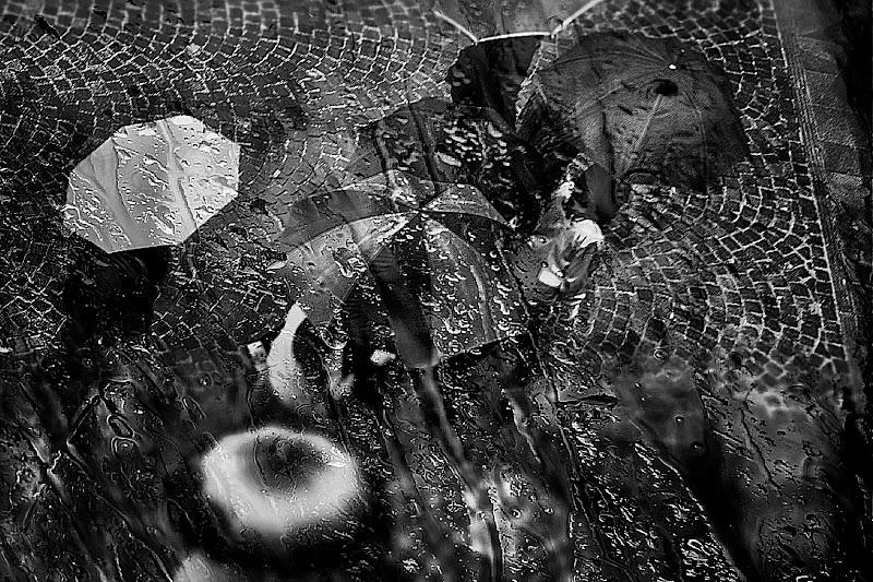 guarda come piove di gia1954