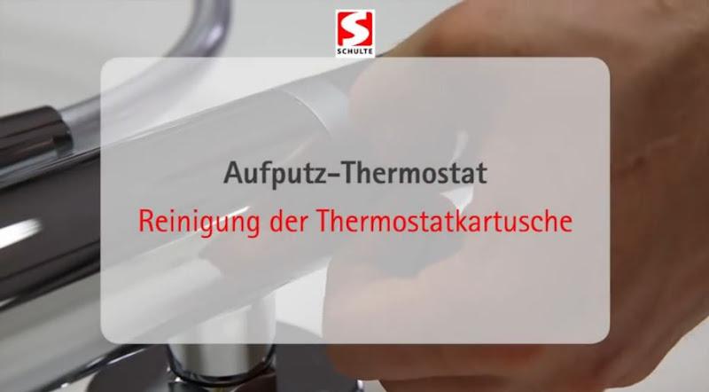 Video: Reinigung einer Thermostatkartusche