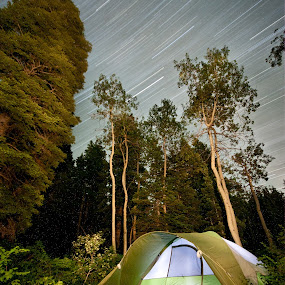 Summer Nights by Daniel Olsen - Landscapes Starscapes ( camping, payson lakes, night, scenic )