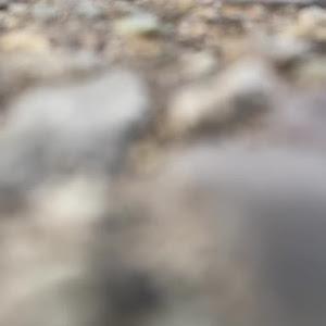 タントカスタム LA600Sのカスタム事例画像 タンタントさんの2020年07月31日22:47の投稿
