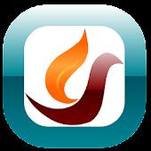 Firebird Browser - Lite & Fast