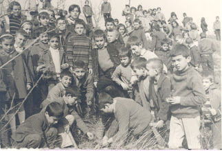 Photo: Δενδροφύτευση στην πλαγιά του σχολείου