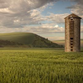 Palouse Morning by Brian Pex - Landscapes Prairies, Meadows & Fields ( sunrise, beauty, nature, landscape, photography, #palouse, digital art )