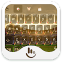 Play Cricket Keyboard Theme icon