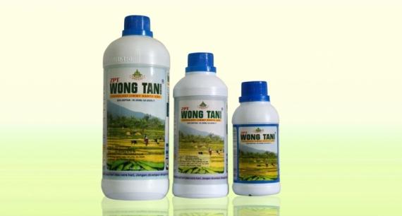 Wong Tani