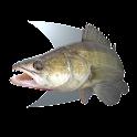 Fish trace icon