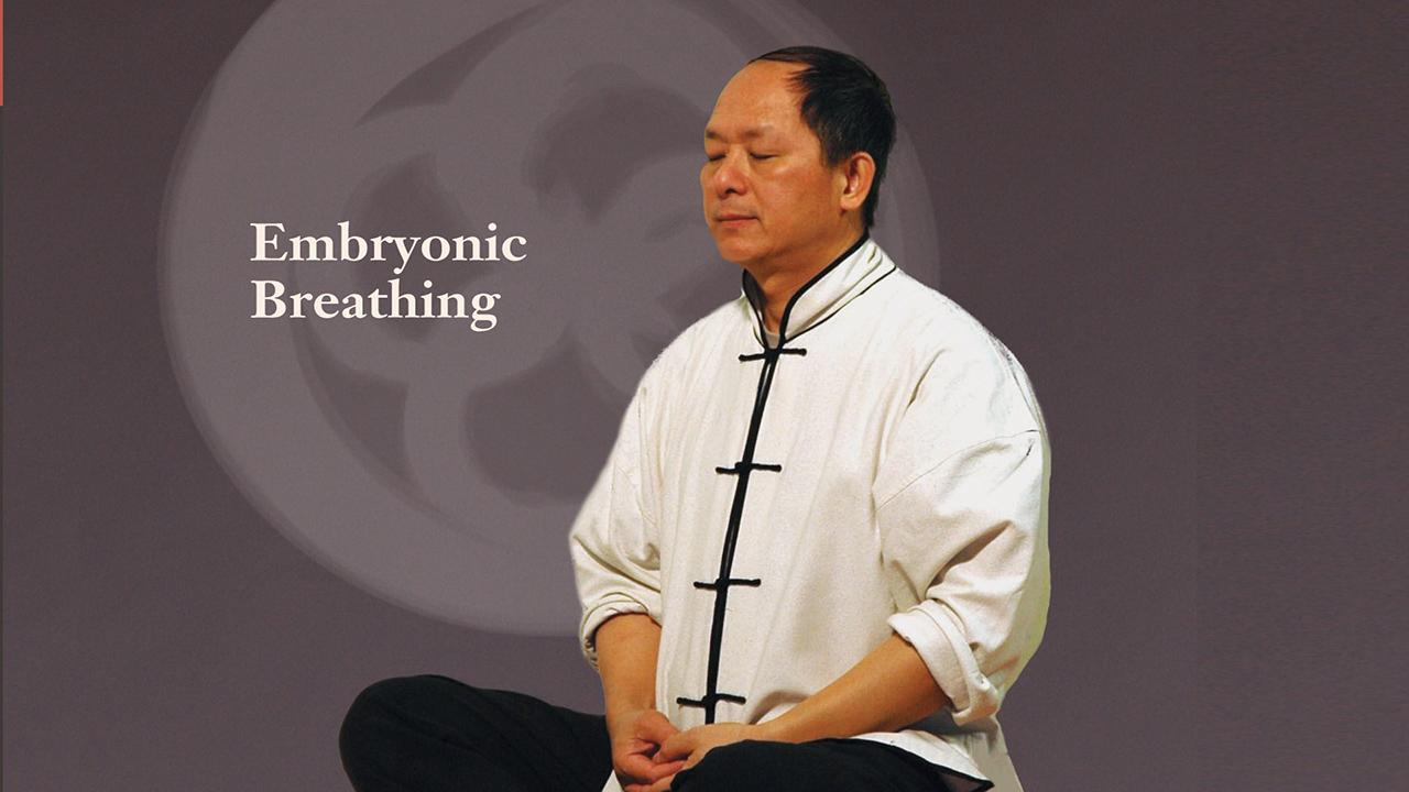 Embryonic Breathing Qigong- screenshot