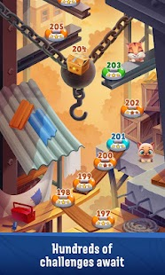 Pet Rescue Puzzle Saga Screenshot