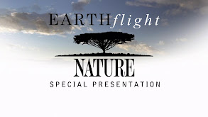 Earthflight, A Nature Special Presentation thumbnail