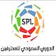 أخبار الدوري السعودي للمحترفين Download for PC Windows 10/8/7