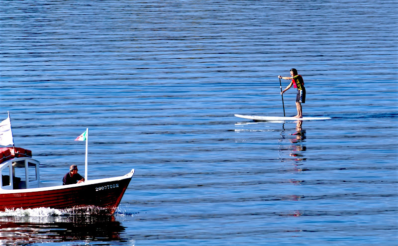 Stand up paddle di FZATOX