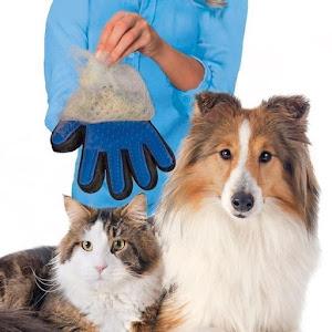 Manusa cu perie pentru animale