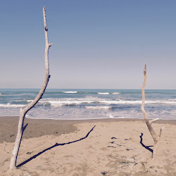 Il mare visto tra due elementi