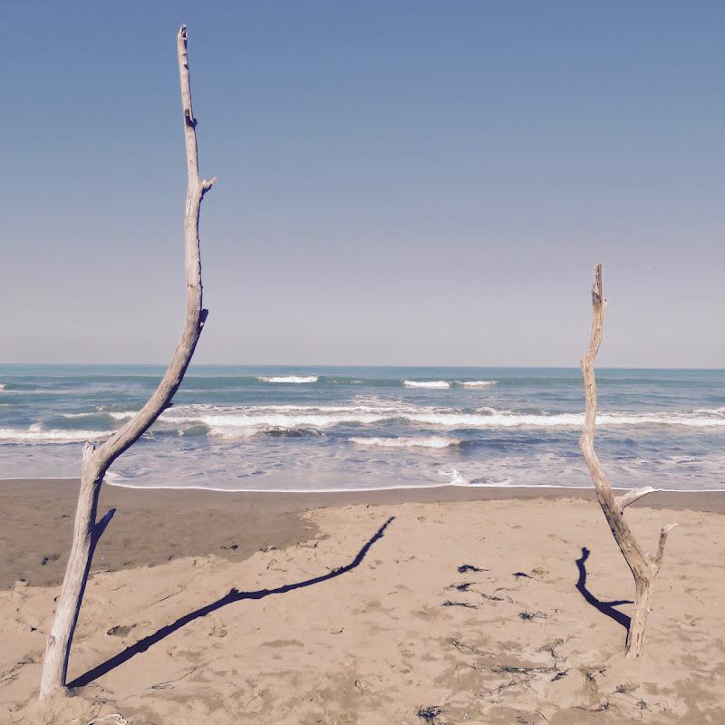 Il mare visto tra due elementi di Fabio_76