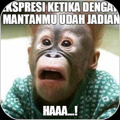 Meme Creator for Whatsapp 遊戲 App LOGO-硬是要APP