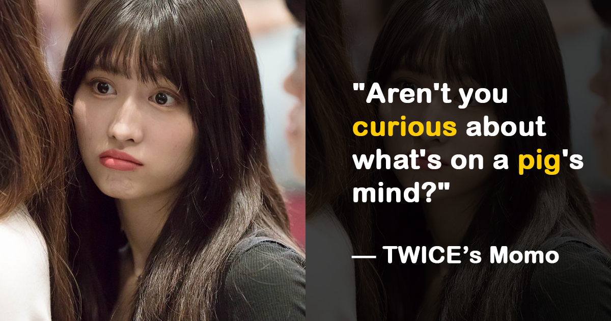 real twice quotes that sound too outrageous to be true koreaboo