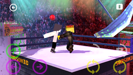 Blocky Wrestle 3D Free Edition 1.1 screenshot 38650