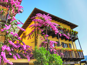 Photo: #lagodigarda  #italy  #limonesulgarda  #yellow   Follow +Frederik Maesenfor more pictures