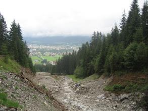 Photo: Bilck auf Holz