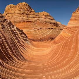 The Wave by Brent Dreyer - Landscapes Deserts ( desert, the wave, arizona, sandstone, rock formation,  )