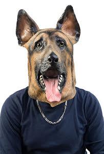 Mask, schäferhund