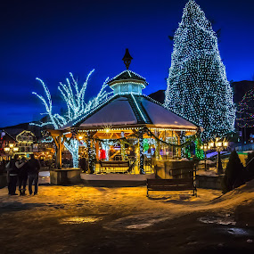 Christmastime in the Park by Penny Miller - Public Holidays Christmas ( lights, washington, winter, snow, christmas, night, decorations, leavenworth, christmastime,  )