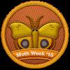 Moth Week 2018