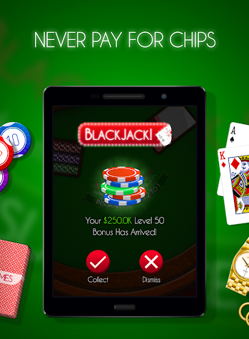 BlackJack! Screenshot