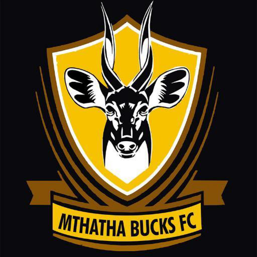 Mthatha Bucks assistant coach Sibusiso Mapompo hopes the festive season break will give them time to recover from their continued losses in the National First Divison following their 2-1 loss against Jomo Cosmos at Vosloorus Stadium over the weekend. Picture: FILE