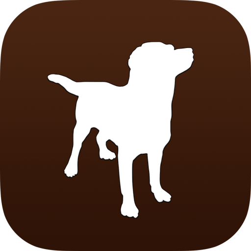 My Dog - Health & Care