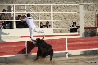 Photo: Chenebier 207 Cavallini sur Lafare a Eyragues le 01 11 2011